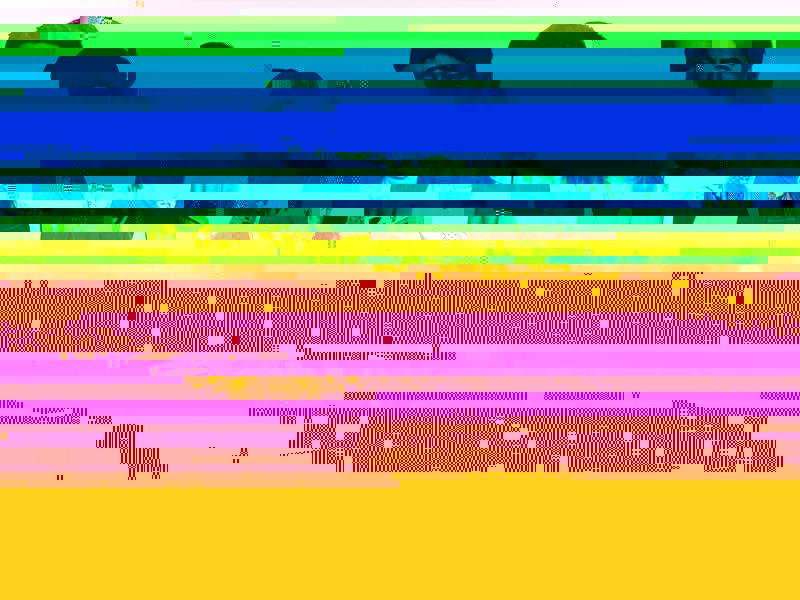 เรื่องย่อซีรี่ส์ โฮมสเตย์ ช่อง GMM25 ออนแอร์ตอนแรกวันพุธที่ 31 พฤษภาคม 2560